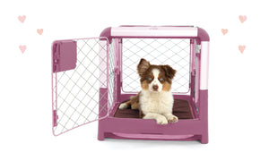The Diggs Lover Dog Crate