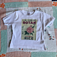 Load image into Gallery viewer, Botan Rice Vintage White Crop Top - M