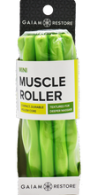 Gaiam Mini Muscle Roller