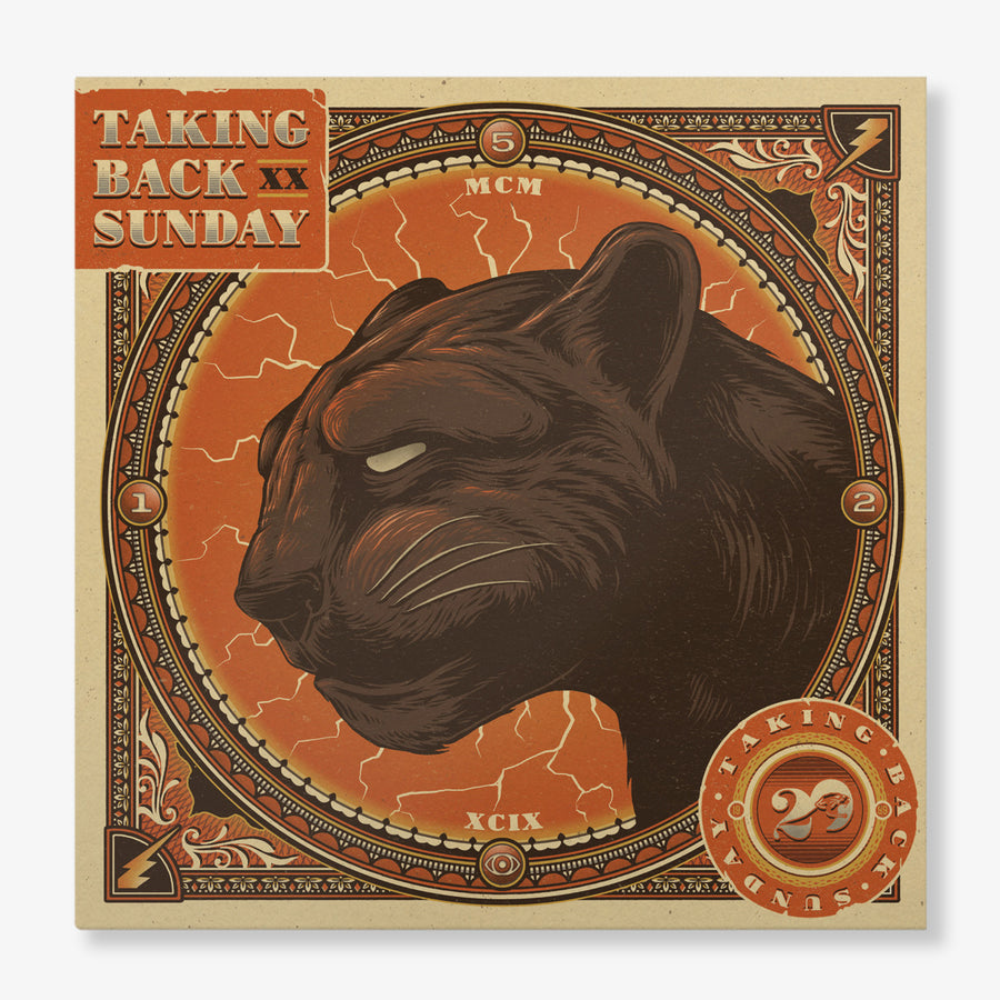 Taking Back Sunday - Twenty (2-LP)