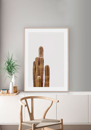 The Boho Cactus