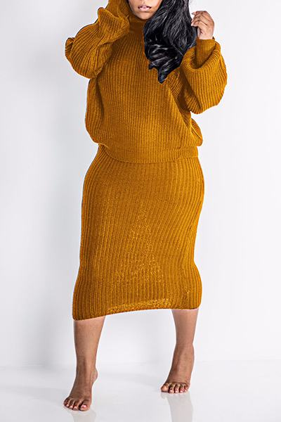 Cozy Long Sleeve High Neck Plain Two Piece Sweater Set