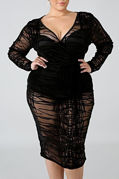 Feminine Long Sleeve V Neck Black See-through Plus Size Dress