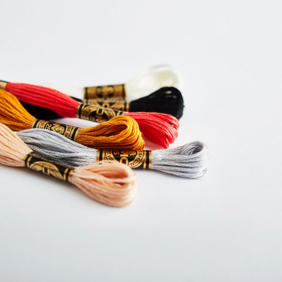 DMC Cotton Embroidery Floss