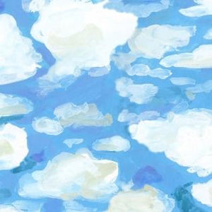 Clouds - Marina 12.49/ Yard