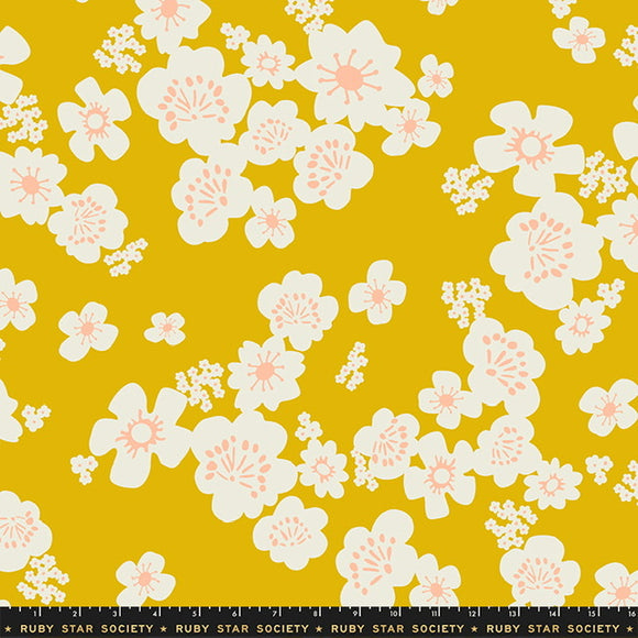 "What Not Goldenrod- 108"" wide backing $18.99/Yard"