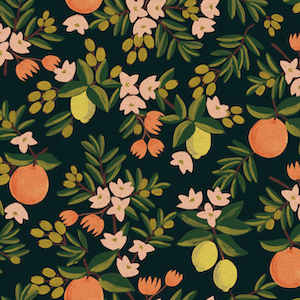 Citrus Floral - Orange - Canvas $20.25/ Yard