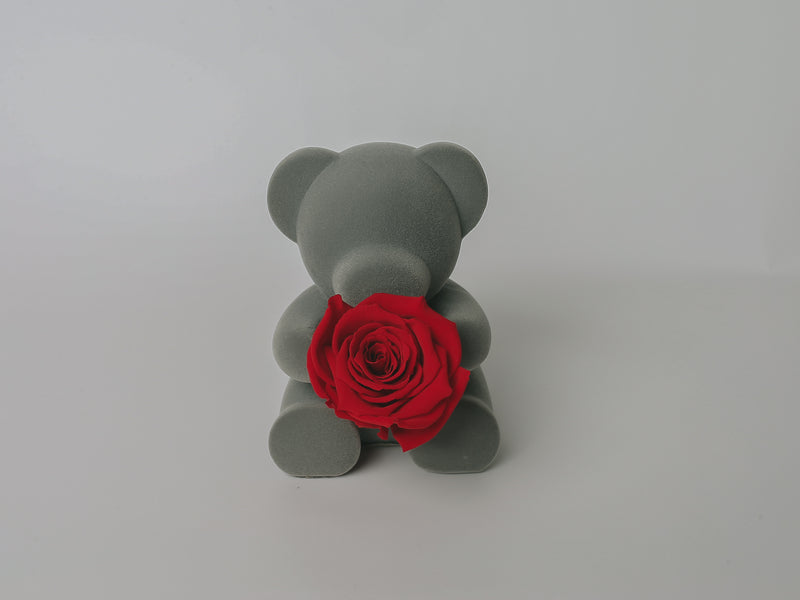 Teddy Rose Bear w/ Forever Rose