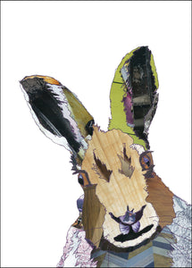 PCK0102 HARE - Hand Signed Giclée Print