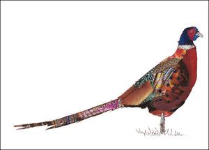 PCK0107 PHEASANT - Hand Signed Giclée Print