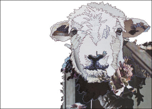 PCK0113 HERDWICK SHEEP - Hand Signed Giclée Print