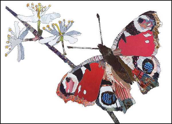 CK0154 'Butterfly' Greetings Card (packed in 6's)