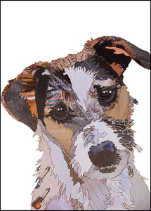 PCK0159 JACK RUSSELL - Hand Signed Giclée Print