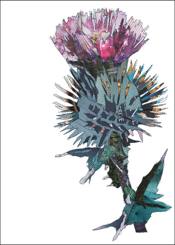 PCKHF06 THISTLE - Hand Signed Giclée Print
