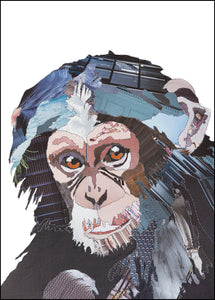 PCKMB08 BABY CHIMP - Hand Signed Giclée Print