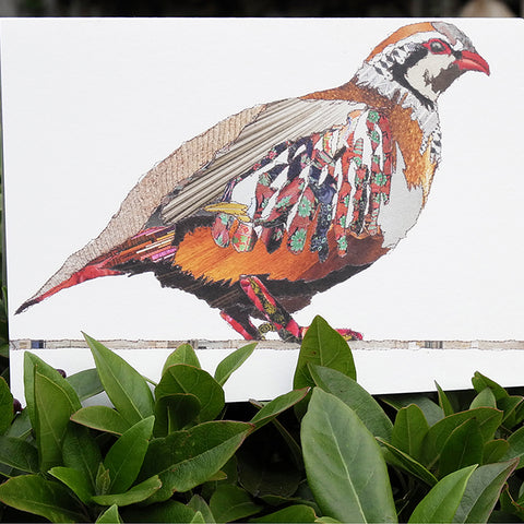 CK0115 'Partridge' Greetings Card (packed in 6's)