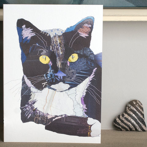 CK0127 'Black and Blue Cat' Greetings Card (packed in 6's)