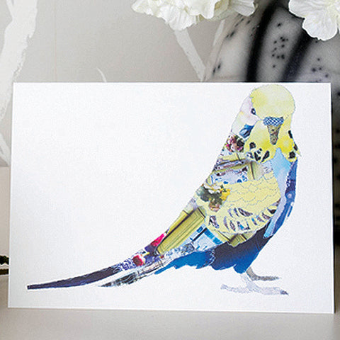 CK0129 'Budgie' Greetings Card (packed in 6's)