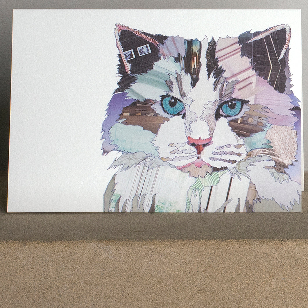 CK0130 'Grey Fluff' Greetings Card (packed in 6's)