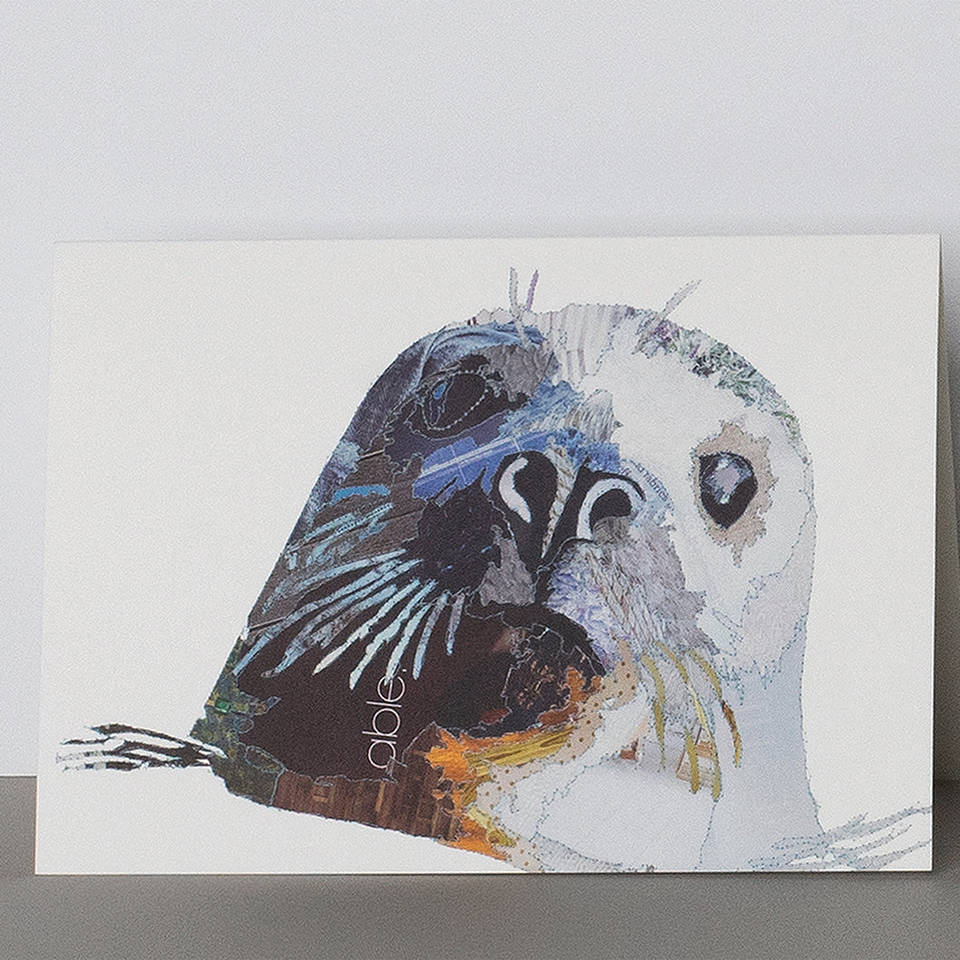 CK0142 'Grey Seal' Greetings Card (packed in 6's)