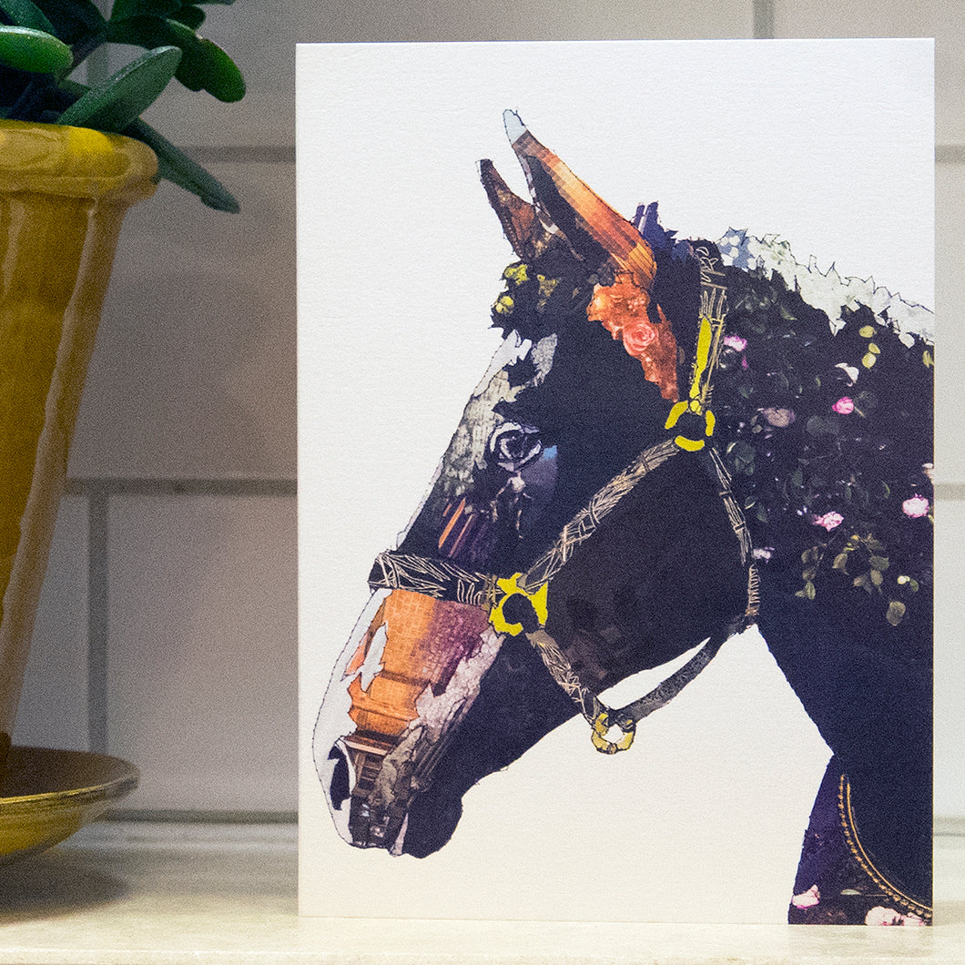 CK0150 'Horse' Greetings Card (packed in 6's)