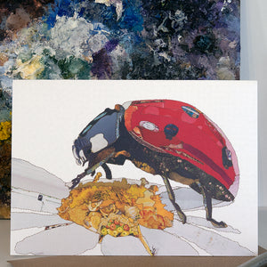CK0161 'Ladybird' Greetings Card (packed in 6's)