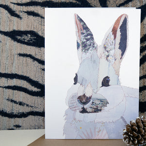CK0162 'Rabbit' Greetings Card (packed in 6's)