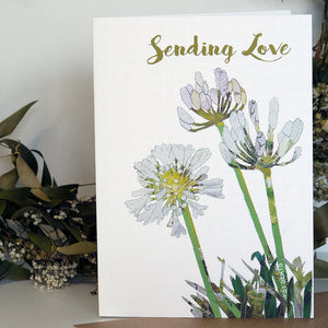 CKHF05 'Agapanthus' Greetings Card (packed in 6's)