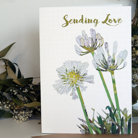 CKHF05 'Agapanthus - Sending Love' Greetings Card (packed in 6's)