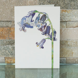 CKHF08B 'BlueBell' Greetings Card (packed in 6's)
