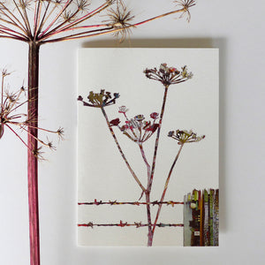 CKHF10 'Cow Parsley' Greetings Card (packed in 6's)