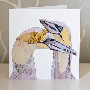 CKLB0006 'Gannets' Greetings Card (packed in 6's)