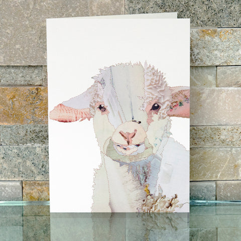 CKMB02 'Baby lamb' Greetings Card (packed in 6's)