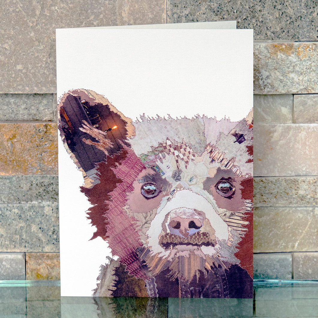 CKMB04 'Baby Bear' Greetings Card (packed in 6's)