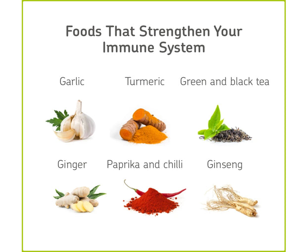 the best foods for immune system
