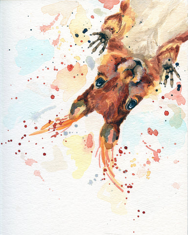 Squirrel Canvas - Animal Art Decor