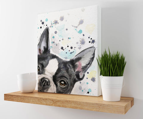 Boston Terrior Dog Art Canvas Print