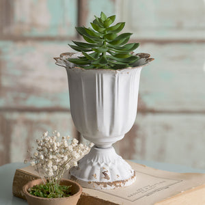 Tall Scalloped Cup