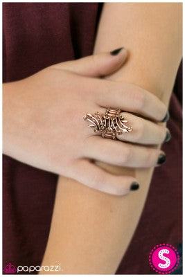 Talk of the Town - Paparazzi ring