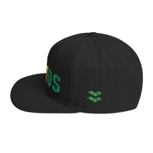 ELA | Elastos Multi-Colour Snapback Hat