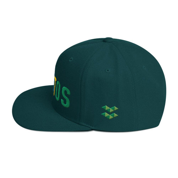 Hat - ELA | Elastos Multi-Colour Snapback Hat
