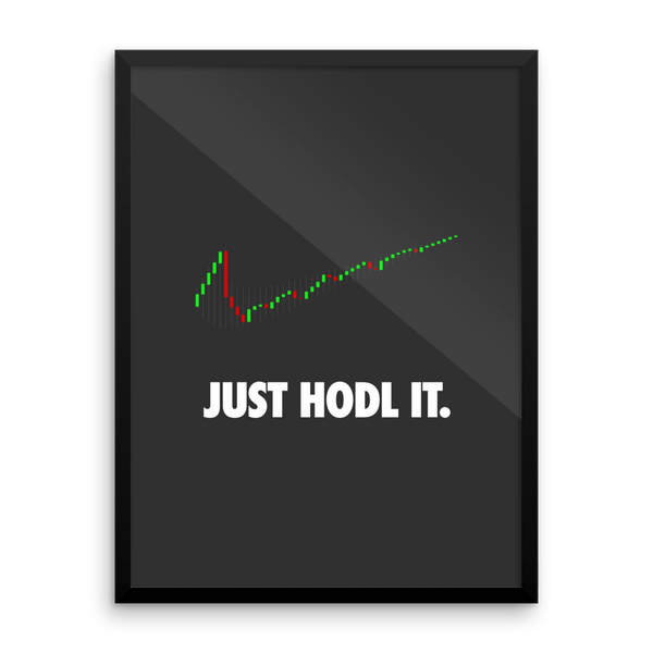 Poster - JUST HODL IT