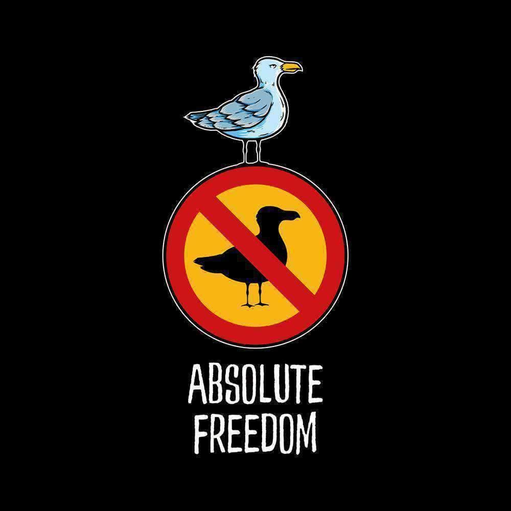 Sartre - Absolute Freedom Seagull