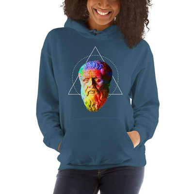 The Philosopher's Shirt Hoodie Plato - Vivid Colours For Trippy Heads