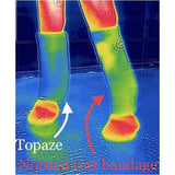 Topaze Ligament Support - Ligament Support