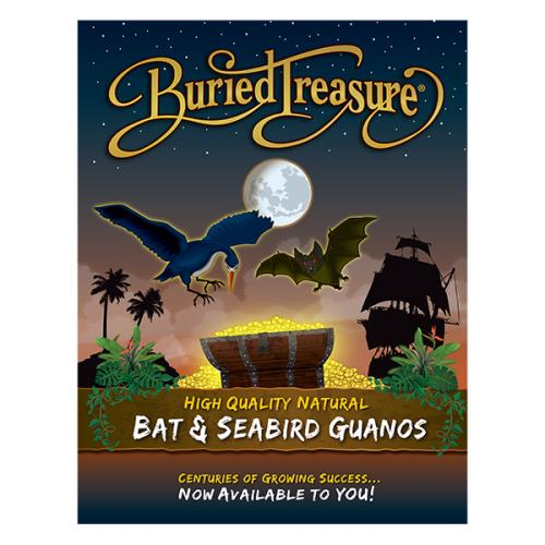 Buried Treasure® Brochure