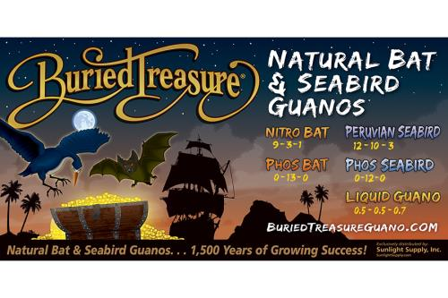 Buried Treasure® Vinyl Banner