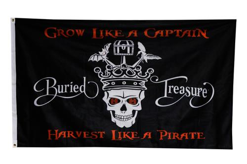 Buried Treasure® Indoor Outdoor Flag