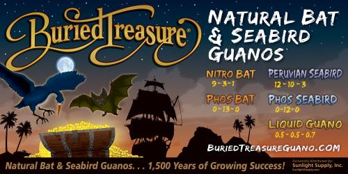 Buried Treasure Banner - 8 ft x 4 ft
