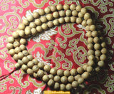 "Grand mala in authentic Boddhi seeds ""seeds of the Buddha"""